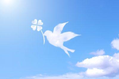 四葉を咥えた小鳥の雲